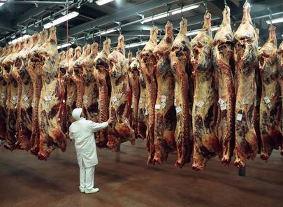 Viande halal : pour nourrir la réflexion