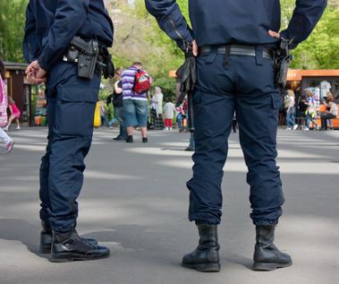 la délinquance en France